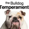 English Bulldog Temperament