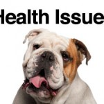 bulldog-health-problems