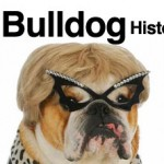 history-of-the-english-bulldog