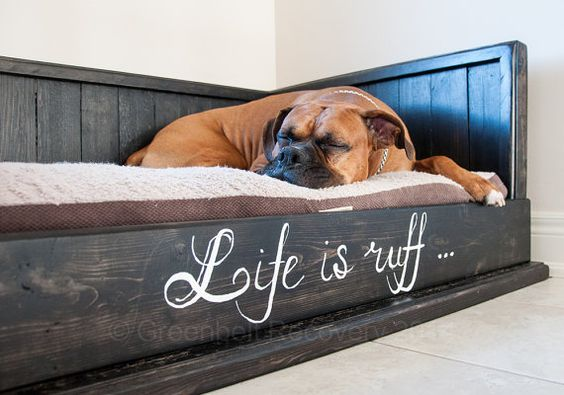 how important are dog beds for english bulldogs? | bulliepupsrus