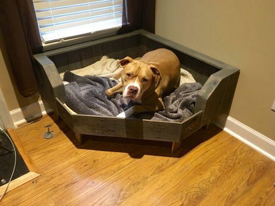 english-bulldog-bed-3