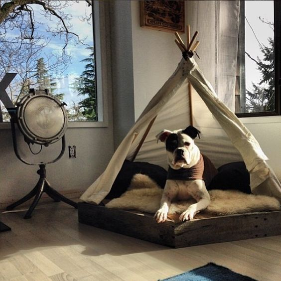 english-bulldog-bed-1
